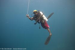BD-150425-Maldives-8649-Homo-sapiens.-Linnaeus.-1758-[Diver].jpg